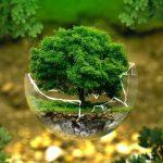 Соопштение за јавност – Одбележување на 5 Јуни, Светскиот ден на животната средина